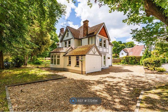 Thumbnail Maisonette to rent in Haydon Road, Poole