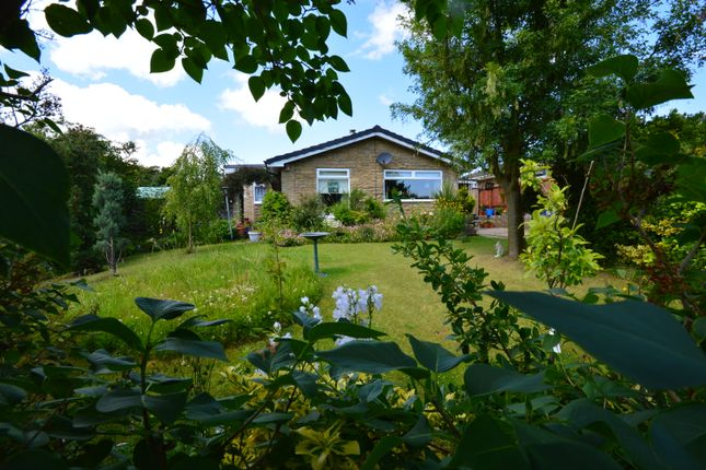 Thumbnail Bungalow for sale in Manor Gardens, Hunmanby, Filey