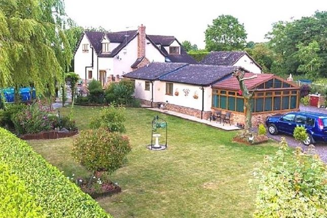 Thumbnail Detached house for sale in Cottered, Buntingford
