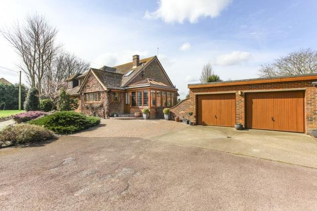 Thumbnail Detached house to rent in Nash, Ash, Canterbury