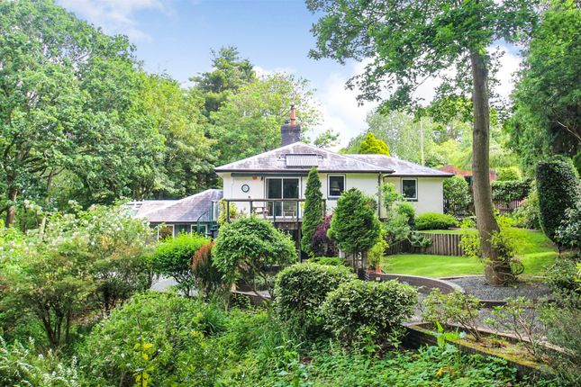 Thumbnail Bungalow for sale in Old Storridge, Alfrick, Worcester, Worcestershire