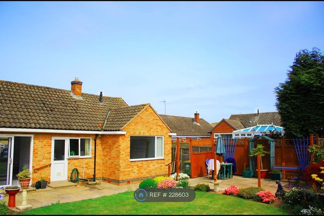 Thumbnail Bungalow to rent in Willoughby Avenue, Kenilworth