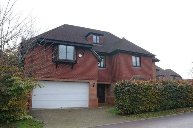 Thumbnail Detached house to rent in Rossendale Close, Enfield