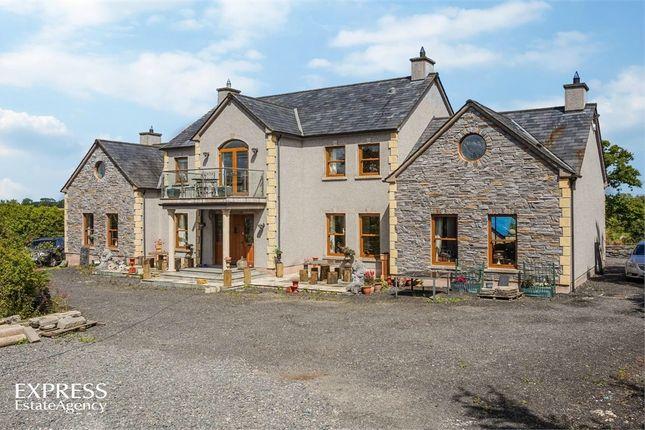 Thumbnail Detached house for sale in Tarsan Lane, Portadown, Craigavon, County Armagh