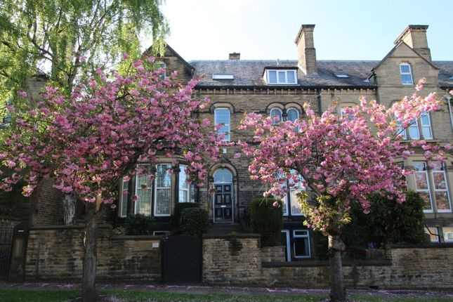 Thumbnail Flat to rent in Vernon Avenue, Huddersfield