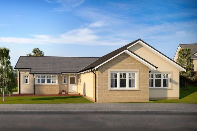 Thumbnail Bungalow for sale in Plot 14, Marlefield Grove, Tibbermore