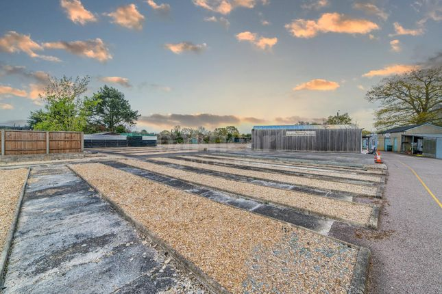 Thumbnail Detached bungalow for sale in Broad Road, Braintree