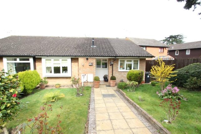 Thumbnail Bungalow to rent in Milcombe Close, Woking