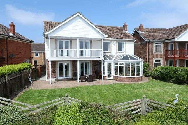 Thumbnail Detached house for sale in Caledonia Park, Hull