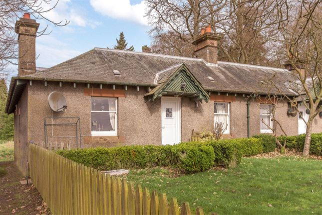 Thumbnail Semi-detached bungalow to rent in West Cottage, Campsie Hill, Guildtown, Perth