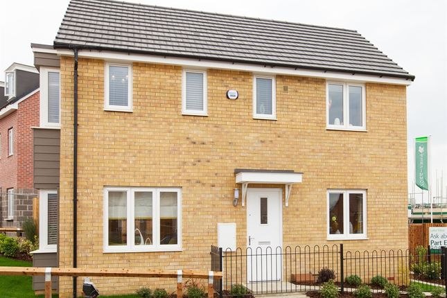 """Thumbnail Detached house for sale in """"The Clayton"""" at Bawler Road, Monkton Heathfield, Taunton"""