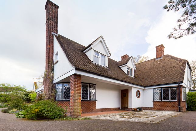 Thumbnail Detached house to rent in Stilemans, Braintree, Essex