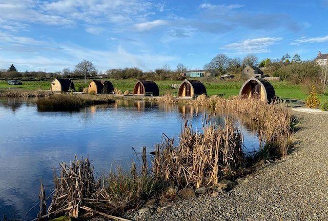 Land for sale in Parc Maerdy Farm, Pentregat, Llandysul SA44