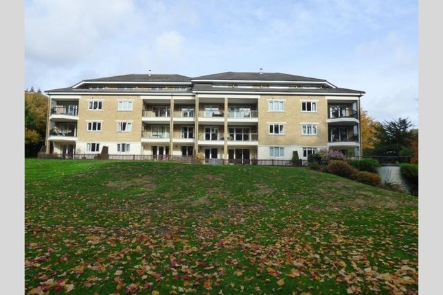 Thumbnail Property for sale in Balcombe Road, Branksome Park, Poole