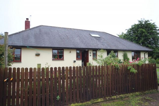 Thumbnail Detached bungalow to rent in Witheridge, Tiverton