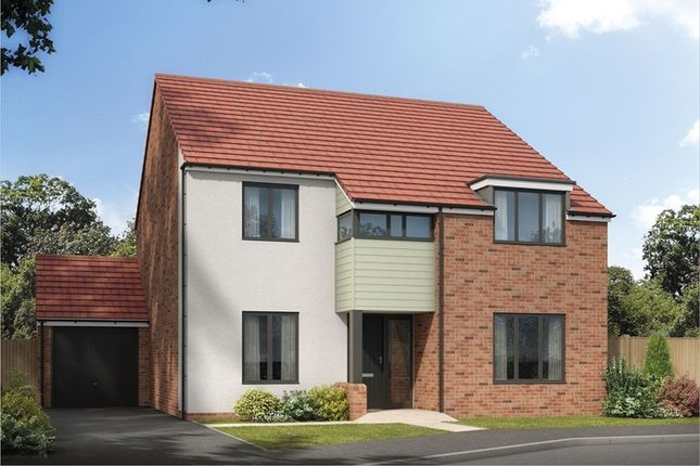 Thumbnail Detached house for sale in Holystone Way, Holystone, Newcastle Upon Tyne