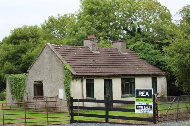 Thumbnail Land for sale in Punchersgrange, Co. Kildare, Ireland