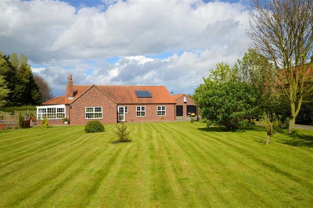 Thumbnail Detached bungalow for sale in Beverley Road, Withernwick, East Yorkshire