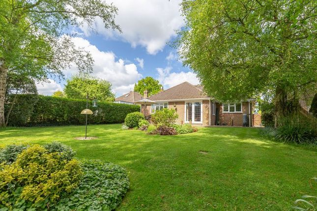 Thumbnail Detached bungalow for sale in Hammerwood Road, Ashurst Wood, East Grinstead