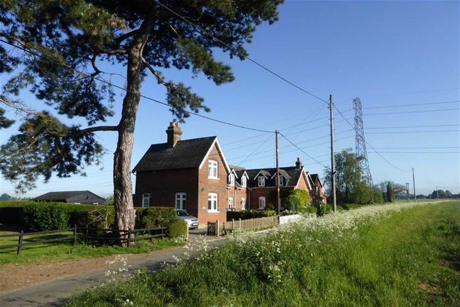 Thumbnail Semi-detached house for sale in Tawney Lane, Stapleford Tawney, Essex