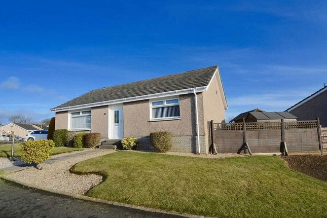 Thumbnail Detached bungalow for sale in Ashgrove Avenue, Maybole