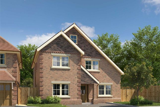 Thumbnail Detached house for sale in Walnut Close, Harpenden, Hertfordshire