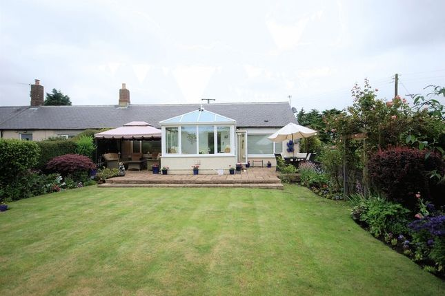 Thumbnail Cottage for sale in Longhirst, Morpeth