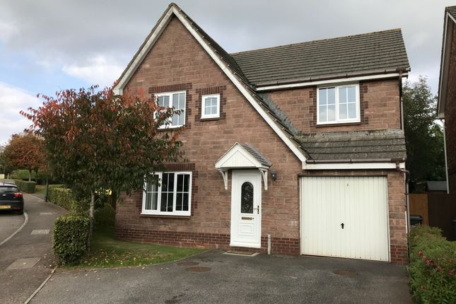 Thumbnail Detached house to rent in Pennine Drive, Paignton, Devon