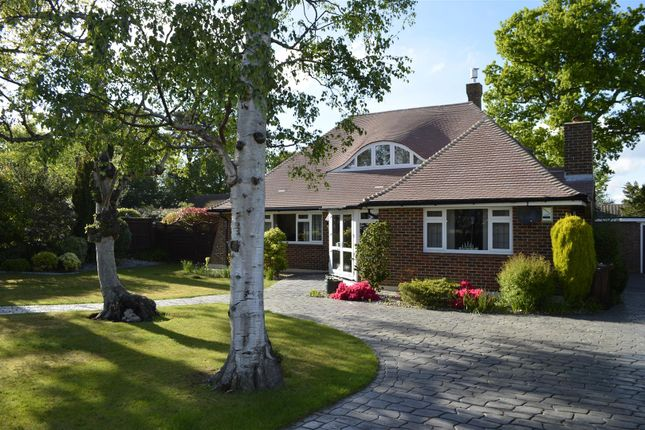 Thumbnail Detached bungalow for sale in Pinewoods, Bexhill-On-Sea