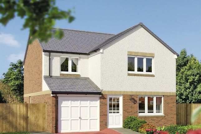 "Thumbnail Detached house for sale in ""The Leith "" at Strath Brennig Road, Smithstone, Cumbernauld"