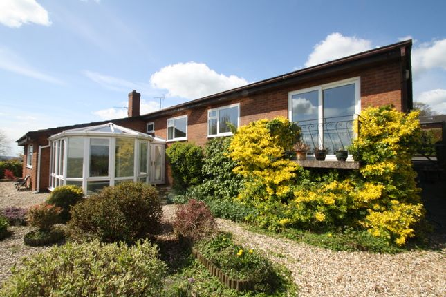 Thumbnail Detached house to rent in Torr Rise, Tarporley