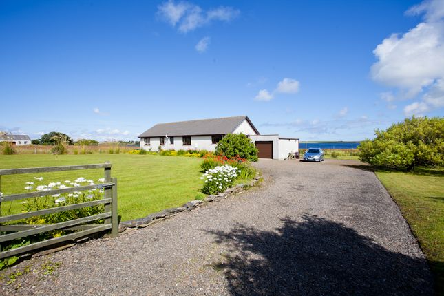 Thumbnail Bungalow for sale in Dunnet, Thurso