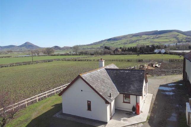 Farm for sale in Rhallt View, Buttington Cross, Welshpool, Powys