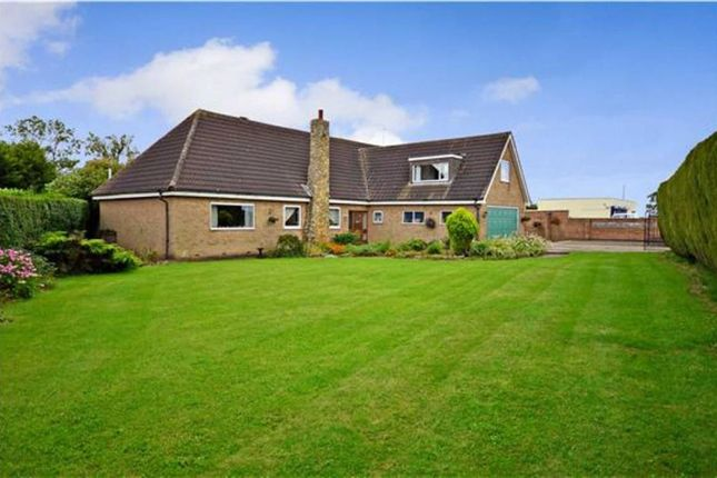 Thumbnail Detached house for sale in Main Road, Gilberdyke, Goole