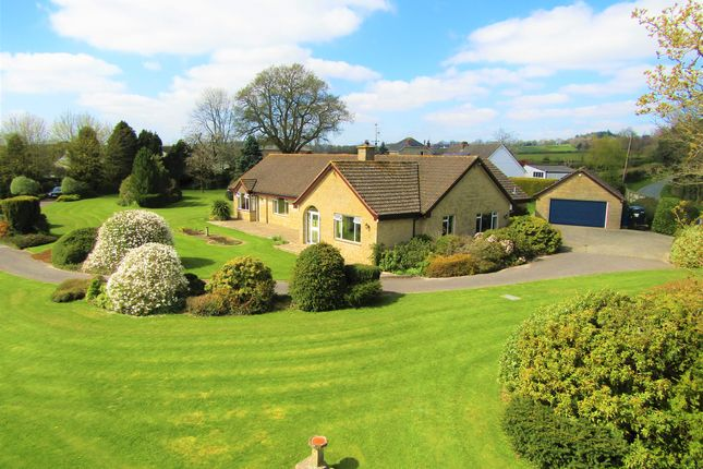 Thumbnail Detached bungalow for sale in Goldsmith Lane, All Saints, Axminster