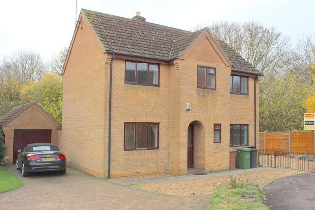 Thumbnail Detached house to rent in Lingwood Park, Longthorpe, Peterborough