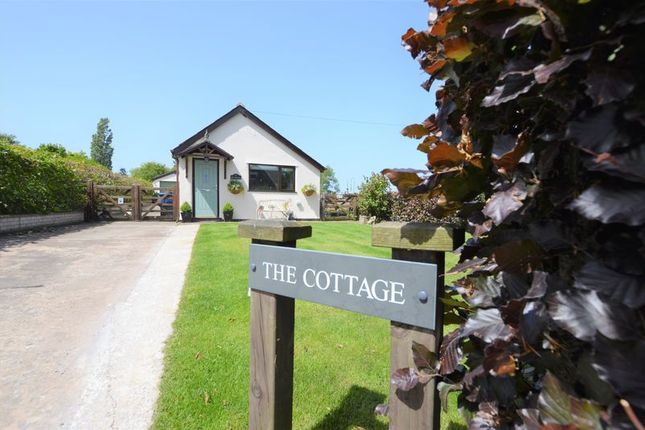 Thumbnail Bungalow for sale in The Cottage, Red Cat Lane, Burscough