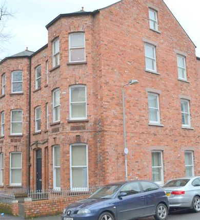 Thumbnail Flat to rent in 95E Eglantine Avenue, Belfast