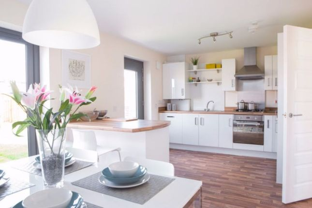 Thumbnail Property for sale in Westerlea, Newtongrange, Dalkeith