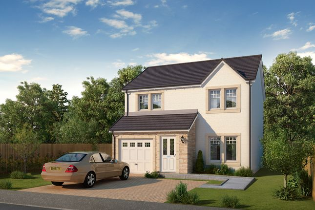 Thumbnail Detached house for sale in Toll Road, Anstruther