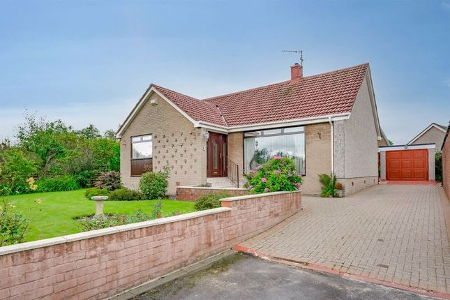 Thumbnail Bungalow for sale in 4 Fern Place, Kilmarnock