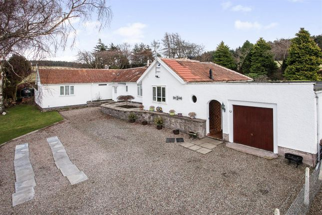 Thumbnail Detached bungalow for sale in Muirhall Road, Perth