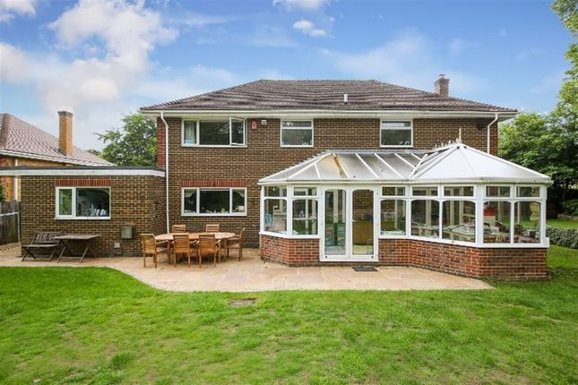 Thumbnail Detached house to rent in Blair Drive, Sevenoaks