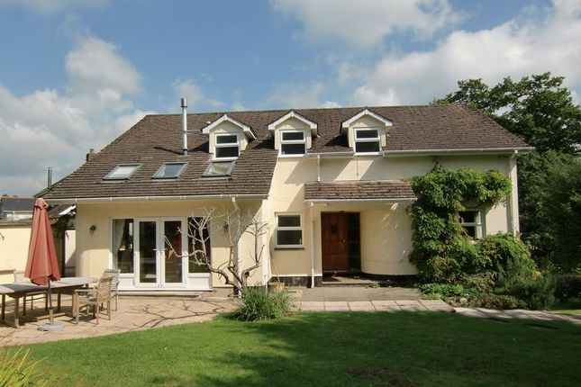Thumbnail Detached house to rent in Dry Lane, Christow, Exeter