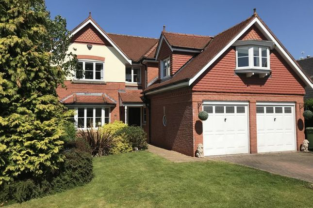 Thumbnail Detached house to rent in Westbourne Drive, Wilmslow