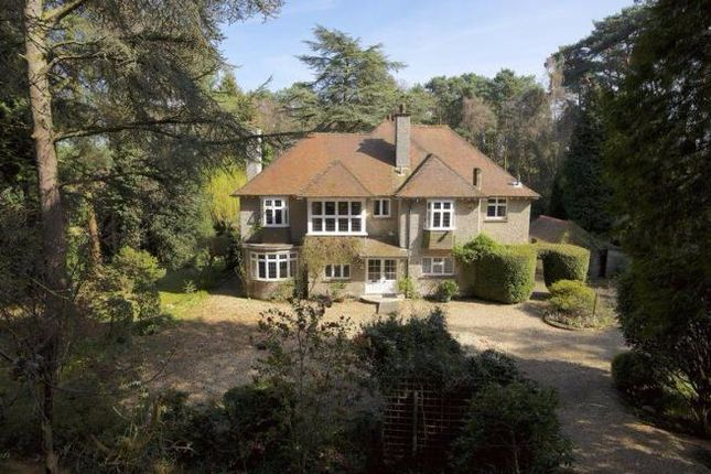 Thumbnail Detached house for sale in Beaufoys Avenue, Ferndown