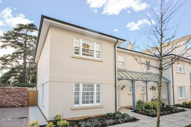 Thumbnail Semi-detached house to rent in Thirlestaine Place, Cheltenham