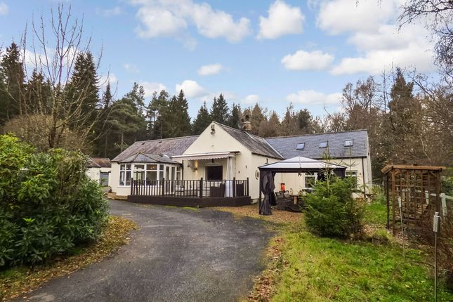 Thumbnail Bungalow for sale in Tarset, Hexham