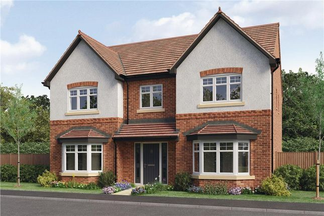 "Thumbnail Detached house for sale in ""Beaumont"" at Woodcock Way, Ashby-De-La-Zouch"