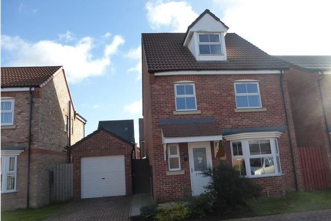 Thumbnail Detached house to rent in Linnet Garth, Scunthorpe